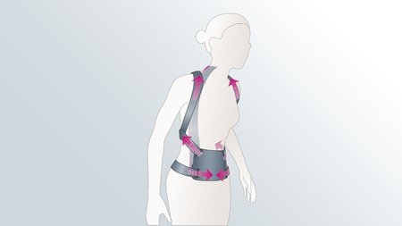 Spinomed and Spinomed active back orthoses